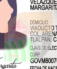 Elemento Ópticamente Variable (OVD)