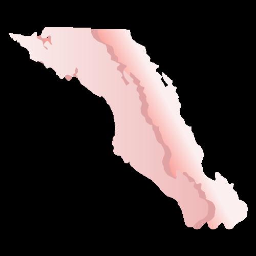 Elección Baja California Sur 2018