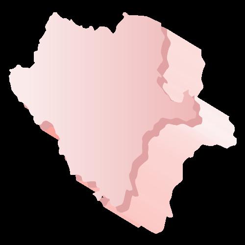 Elección Durango 2018