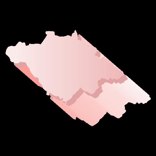 Elección Tlaxcala 2018