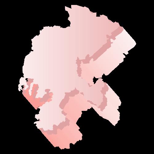 Elección Zacatecas 2018