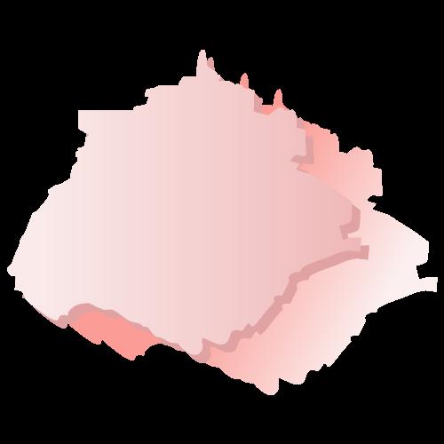 Proceso electoral ordinario en el estado de Aguascalientes para elegir los integrantes de once ayuntamientos