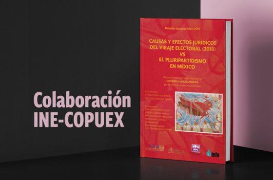 Colaboración INE-COPUEX